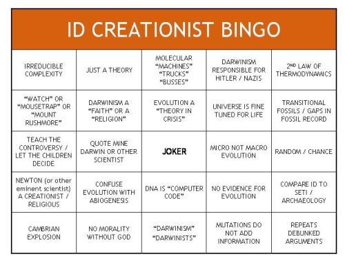 Bingo kreatynów